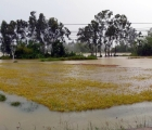 Thời tiết hôm nay: Bắc Bộ và Trung Bộ mưa to, đề phòng lũ quét, sạt lở đất