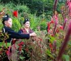 Độc đáo Tết Hoa của dân tộc Cống ở Lả Chà (Điện Biên)