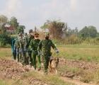 An Giang: Tăng cường công tác phòng chống Covid-19, kiểm soát chặt tuyến biên giới