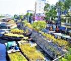 Đặc sắc chợ hoa xuân bến Bình Đông dịp Tết Tân Sửu 2021