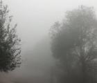 Thời tiết hôm nay: Miền Bắc rét buốt về đêm và sáng