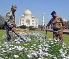 Ấn Độ: Đền Taj Mahal đóng cửa vì thông tin có bom