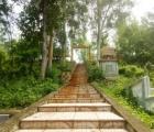 Cấp phép khai quật khảo cổ tại di tích Cù Lao Rùa, tỉnh Bình Dương
