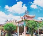 Ngôi chùa 'hút' khách nhờ loài sen lạ, có thể 'cõng' người trưởng thành