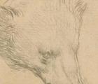 Bức phác họa 'Đầu gấu' nằm gọn trong lòng bàn tay có giá... 383 tỷ đồng