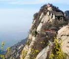Hoa Sơn trà thất – Trải nghiệm thưởng trà khó quên trên đỉnh núi cao hơn 2000 mét.