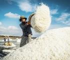 'Thủ phủ' nghề làm muối Việt Nam