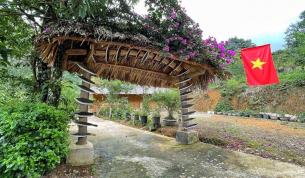 Ngỡ ngàng hoa muồng hoàng yến vàng rực ở Mộc Châu