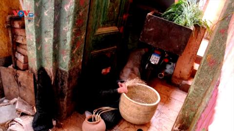 Ai Cập: Nghệ nhân 60 năm gắn bó với nghề đan lá cọ truyền thống