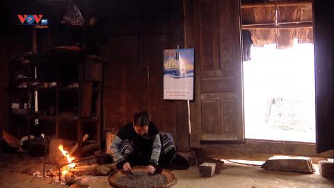 Đến Suối Giàng thưởng trà Shan Tuyết