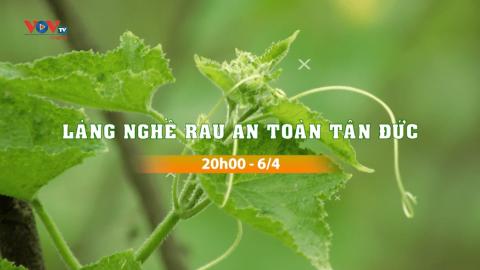 """Đón xem chương trình Làng nghề Việt: """"Làng nghề rau an toàn Tân Đức"""""""