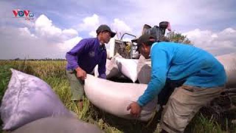 Lạng Sơn - Thực hiện thành công các chỉ tiêu kinh tế xã hội