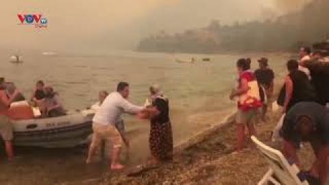 Nhiều du khách phải sơ tán do cháy rừng ở Thổ Nhĩ Kỳ