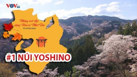 Những Nét Đẹp Vùng Kansai Nhật Bản: Núi anh đào Yoshino