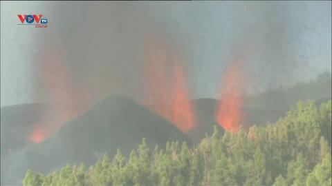 Tây Ban Nha: Núi lửa phun trào ở quần đảo Canaria, hàng nghìn người phải sơ tán
